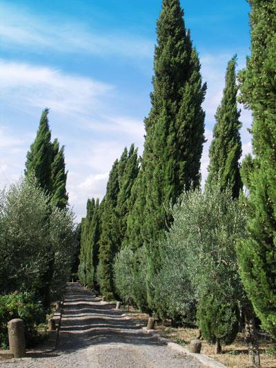 Casale Sonnino Cobblestone Driveway