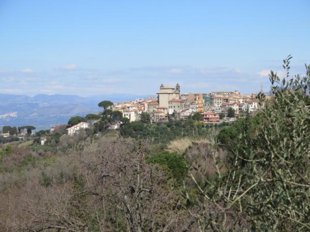 Monte-Porzio-Catone-by-Casale-Sonnino